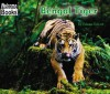 Bengal Tiger - Edana Eckart