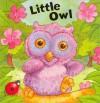 Little Owl (Nature Windows) - Rebecca Elliott