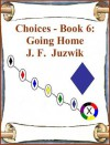 Going Home (Choices, #6) - J.F. Juzwik