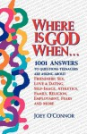 Where is God When--: 1001 Answers to Questions Teenagers Are Asking about Friendship, Sex, Love... - Joey O'Connor