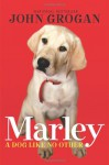 Marley: A Dog Like No Other - John Grogan