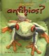 Que Son los Anfibios? - Bobbie Kalman, Jacqueline Langille