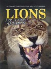 Lions and Other Mammals - Andrew Solway