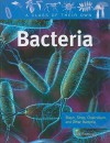 Bacteria: Staph, Strep, Clostridium, and Other Bacteria (A Class of Their Own) - Judy Wearing