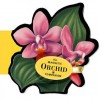 The magnetic orchid companion - Sterling Publishing