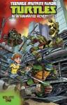 Teenage Mutant Ninja Turtles: New Animated Adventures, Volume 1 - Kenny Byerly, David Tipton, Scott Tipton, Erik Burnham