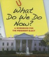 What Do We Do Now? a Workbook for the President-Elect - Stephen Hess