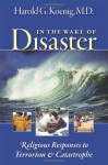 In the Wake of Disaster: Religious Responses to Terrorism and Catastrophe - Harold G. Koenig