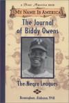 The Journal Of Biddy Owens, Birmingham, Alabama, 1948 - Walter Dean Myers