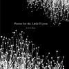 Poems For The Little Room - G. Michael Vasey
