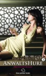 Anwaltshure 3 Erotischer Roman (German Edition) - Helen Carter