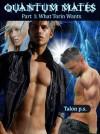 Quantum Mates: What Torin Wants - Talon P.S.
