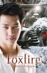 Foxfire (An Other Novel) - Karen Kincy