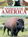 An Illustrated Guide to the Animals of America: A Visual Encyclopedia of Amphibians, Reptiles and Mammals in the United States, Canada and South America, with Over 350 Illustrations - Tom Jackson