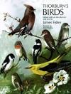 Thorburn's Birds - James Fisher, Archibald Thorburn