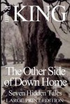 Other Side of Down Home: Seven Hidden Tales - Ryan King