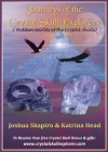 Journeys of the Crystal Skull Explorers (Discover the True Secrets that are Hidden within the Crystal Skulls) - Katrina Head, Joshua Shapiro