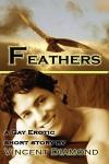 Feathers - Vincent Diamond