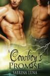 A Cowboy's Promise - Sabrina Luna
