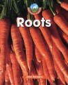 Roots (World of Plants) - John Farndon