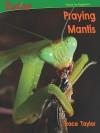 Praying Mantis - Trace Taylor, Jane Hileman