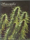 Sinsemilla: Marijuana Flowers - Jim Richardson