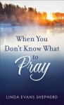 When You Don't Know What to Pray - Linda Evans Shepherd