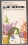 Small is Beautiful: Economics as if People Mattered (Perennial Library) - E.F. Schumacher, Theodore Roszak