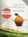 Beginning and Intermediate Algebra Plus MyMathLab Student Access Kit (4th Edition) - K. Elayn Martin-Gay, Martin-Gay Martin-Gay