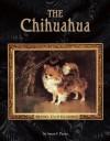 The Chihuahua - Susan Payne