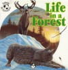 Life in a Forest - Helen Mason, Gregg Rodgers