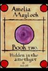 Amelia Maylock, book two; Hidden in the Amethyst (Amelia Maylock books) - Jason Ellis