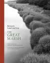 Between Land and Sea: The Great Marsh - Dorothy Kerper Monnelly, Jeanne Falk Adams, Doug Stewart