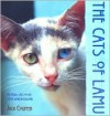 The Cats of Lamu - Jack Couffer