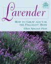 Lavender: How to Grow and Use the Fragrant Herb - Ellen Spector Platt