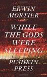 While the Gods Were Sleeping - Erwin Mortier, Paul Vincent