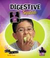 Digestive System - Sarah Tieck