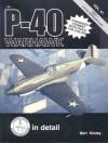 P-40 Warhawk pt 1 - Bert Kinzey