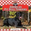American Pit Bull Terriers - Joanne Mattern