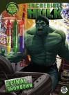 The Final Showdown (The Incredible Hulk) - Siobhan Ciminera, YOE! Studio®