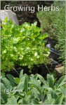 Growing Herbs, How To Grow Herbs in Beds, Containers, Pots, Baskets, Window Boxes - Ed Gaynor