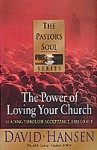The Power of Loving Your Church: Leading Through Acceptance and Grace (Pastor's Soul) - David Hansen