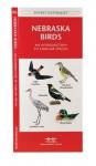 Nebraska Birds: A Folding Pocket Guide to Familiar Species - James Kavanagh, Raymond Leung