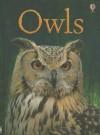 Owls IR - Emily Bone
