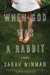When God Was a Rabbit: A Novel - Sarah Winman