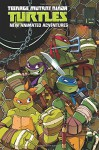 Teenage Mutant Ninja Turtles: New Animated Adventures Omnibus Volume 1 - Kenny Byerly, Scott Tipton, David Tipton, Jon Sommariva
