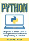 Python: A Beginner to Expert Guide to Learning the Essence of Python Programming in One Day (Python, Python Programming, Beginner to Expert Guide) - Morgan Carey