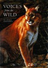 Voices From the Wild: An Animal Sensagoria - David Bouchard, Ron Parker