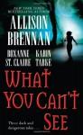 What You Can't See - Allison Brennan, Karin Tabke, Roxanne St. Claire