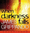 When Darkness Falls (Audio) - James Grippando, Jonathan Davis